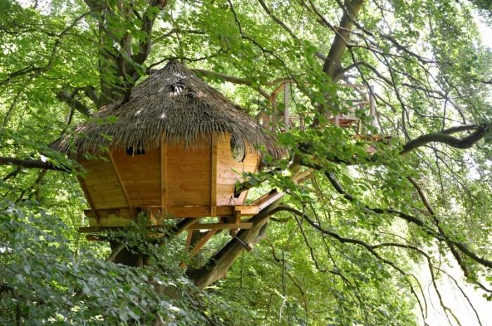 cabaña arbol - Vive un romántico San Valentín con un plan de lujo en la naturaleza