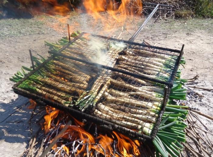 cocinar Calçots cataluña españa - Los ocho planes anti - San Valentín