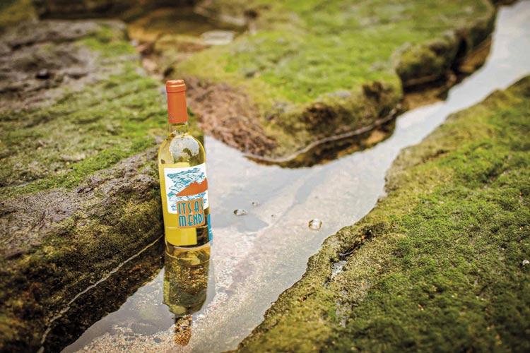 """Bodega Itsasmendi botella Laga mar 112 txakoli - Fotos de: """"Txakolí, del caserío al mundo"""""""