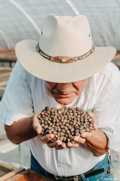 Hombre Cafe Honduras Centroamérica© Marcos Cifo - Centroamérica,  un lugar para sentirse vivo