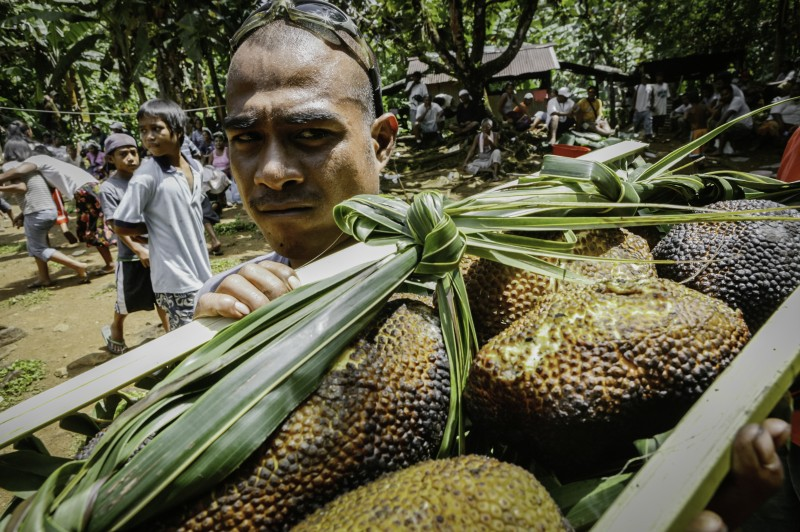 nam madol hombre fruta del pan - Nam Madol; El secreto de los Pohnpeian