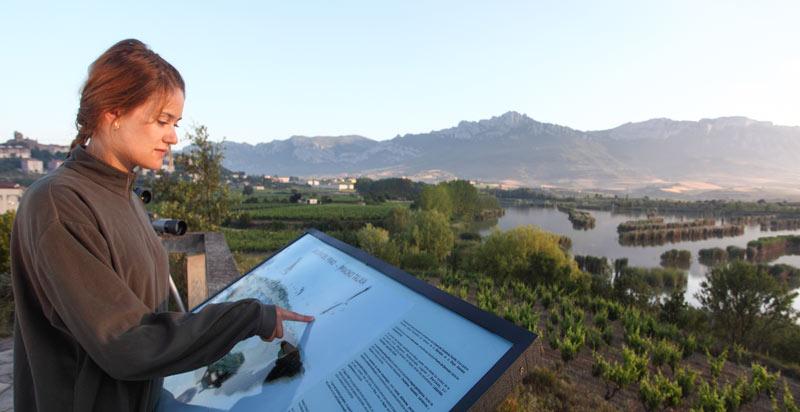Avistamiento de aves en La Rioja alavesa - La ruta del vino de Rioja Alavesa sinónimo de naturaleza