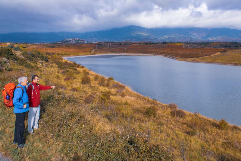 Camino Ignaciano La Rioja Alavesa - La ruta del vino de Rioja Alavesa sinónimo de naturaleza