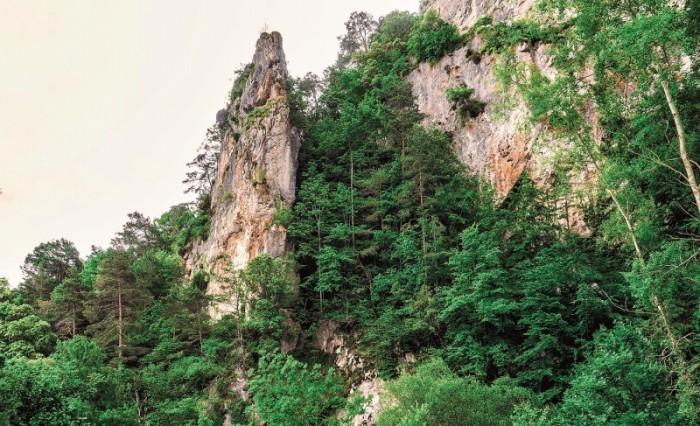 San Zadornil