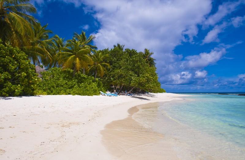maldivas sr lanka playa cocoteros arena - Maldivas, increíbles, espléndidas, maravillosas