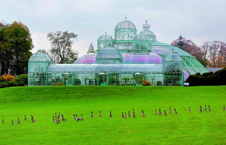 Bruselas Royal Greenhouses ©Olivier PoleVisitFlanders - Bélgica: Bruselas; La capital del chocolate