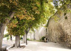 5 planes para disfrutar del otoño en Burgos